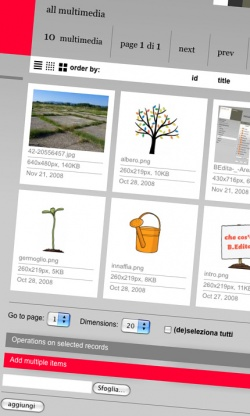 BEdita-_-Multimedia.jpg